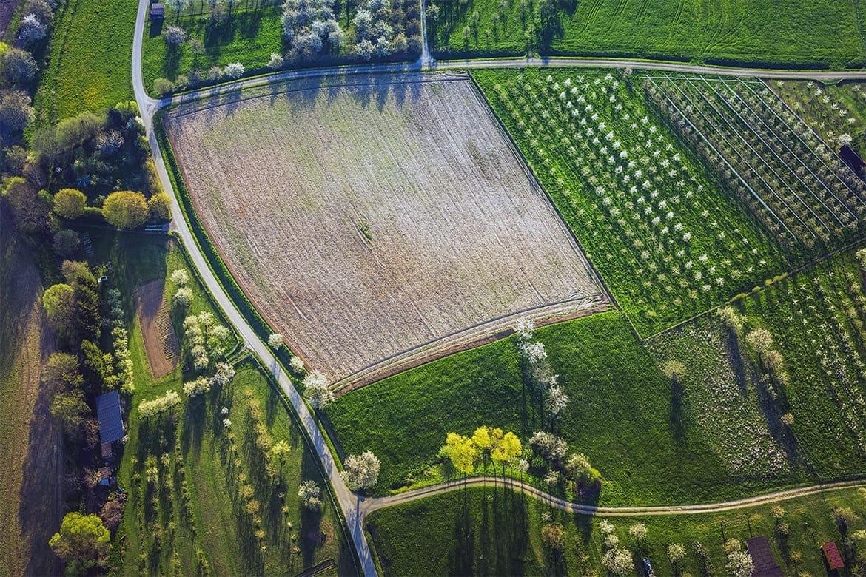 Право бесплатно приватизировать землю
